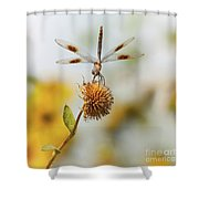 Dragonfly On Dead Bud Shower Curtain
