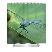 Dragonfly On Lily Shower Curtain