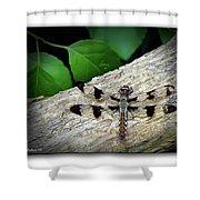 Dragonfly On Log Shower Curtain