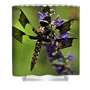 Dragonfly On Salvia Shower Curtain