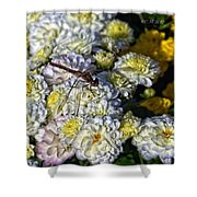 Dragonfly On White Mums Shower Curtain