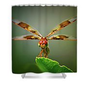 Dragonfly Pitstop Shower Curtain