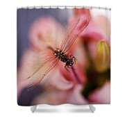 Dragonfly Serenity Shower Curtain