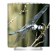 Dragonfly With Yellowjacket 1 Shower Curtain