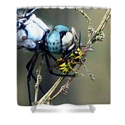 Dragonfly With Yellowjacket 4 Shower Curtain