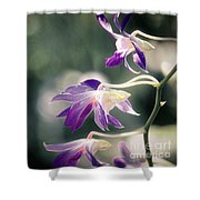 Dragons In The Orchids Shower Curtain