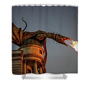 Dragon's Revenge Shower Curtain