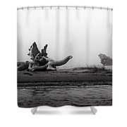 Dragonwood II Shower Curtain