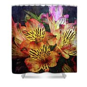 Dramatic 1536 Idp_2 Shower Curtain