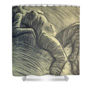 Dramatic 5 - Female Nude  Shower Curtain