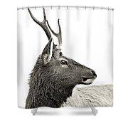 Dramatic Deer Shower Curtain