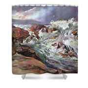 Dramatic Entrance Shower Curtain