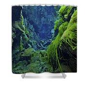 Dramatic Fluorescent Green Algae Shower Curtain by Mathieu Meur