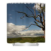 Dramatic Overlook Shower Curtain