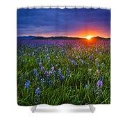 Dramatic Spring Sunrise At Camas Prairie Idaho Usa Shower Curtain