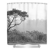 Dramatic Tree Shower Curtain