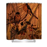 Draw Back The Curtain Shower Curtain