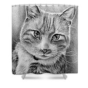 Drawing Of A Cat In Black And White Shower Curtain