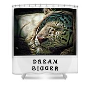 Dream Bigger Shower Curtain