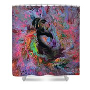 Dream Dancer Art  Shower Curtain