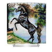 Dream Horse Series 3015 Shower Curtain