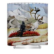 Dream Hunt Shower Curtain