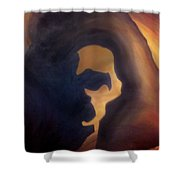 Dream Image 4 Shower Curtain