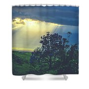 Dream Of Mortal Bliss Shower Curtain
