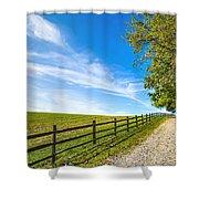 Dream Path Shower Curtain