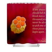 Dream Pieces Shower Curtain