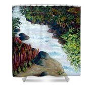 Dream River Shower Curtain