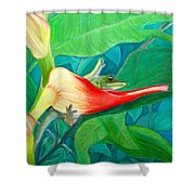 Dream Time-2015 Shower Curtain