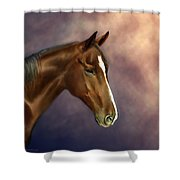 Dreamer Shower Curtain