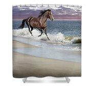 Dreamer On The Beach Shower Curtain