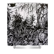 Dreaming Alaska.part One Shower Curtain