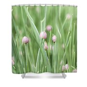 Dreaming Shower Curtain