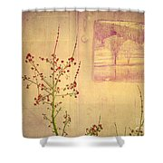 Dreaming Beyond Doors Shower Curtain