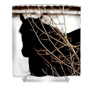 Dreaming Of Black Beauty Shower Curtain