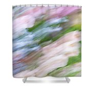 Dreaming Of Flowers 1 Shower Curtain