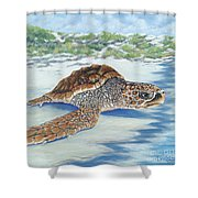 Dreaming Of Islands Shower Curtain