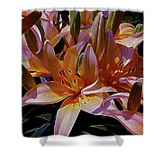 Dreaming Of Lilies 5 Shower Curtain