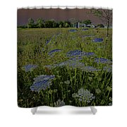 Dreaming Of Queen Annes Lace Shower Curtain