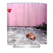 Dreaming Of The Weekend Shower Curtain