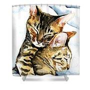 Dreamland - Bengal And Savannah Cat Painting Shower Curtain