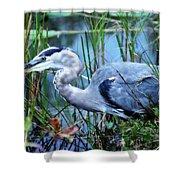 Dreamland Great Blue Heron Shower Curtain
