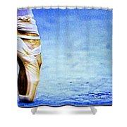 Dreamlike Dancing  Shower Curtain