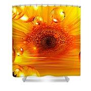 Dreams 2 - Gerbera Sunrise Shower Curtain