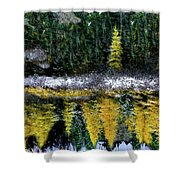 Dreams Of A Young Tamarack Shower Curtain