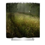 Dreams Of Grass Shower Curtain