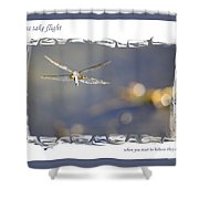 Dreams Take Flight Poster Or Card Shower Curtain